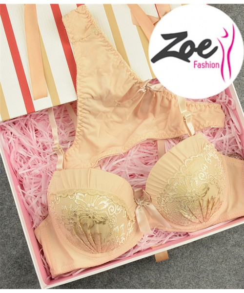 Zoey VS Brand plus size D cup push up bra thong set